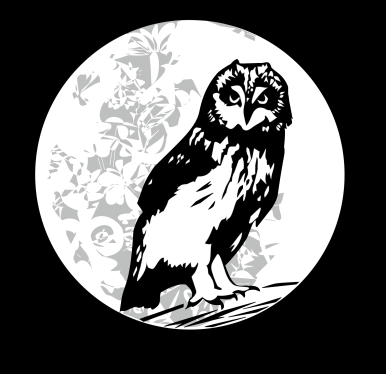 OWL LOGO3bsilver.png
